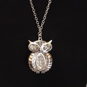 Hollow Owl Necklace With Crystal Backdrop
